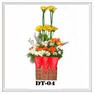 DT04-300x300 DT04