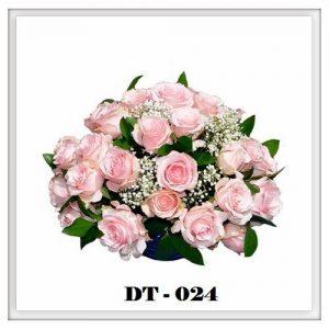 DT24-300x300 DT24