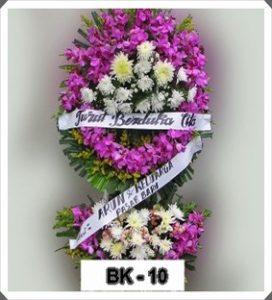 KD10-272x300 KONICA MINOLTA DIGITAL CAMERA