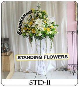 STD-11-1-1-272x300 Bunga Standing
