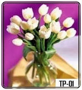 TV01-272x300 Bunga Meja Tulip