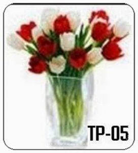 TV04-272x300 Bunga Meja Tulip