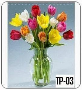 TV08-272x300 Bunga Meja Tulip
