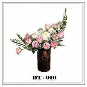 DT10-300x300 DT10