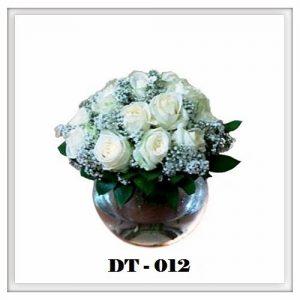 DT12-300x300 DT12