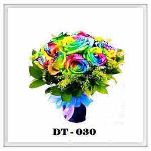 DT30-300x300 DT30