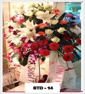 STD-14-1-272x300 STD-14