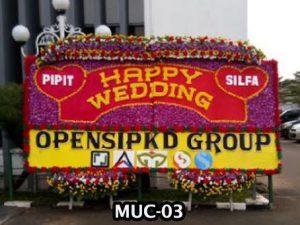 MUC-03-300x225 Bunga Papan Besar