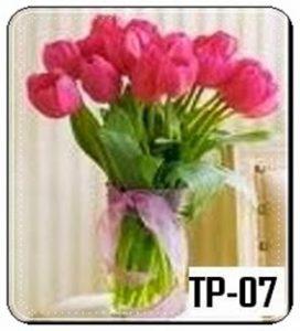 TV05-272x300 TV05